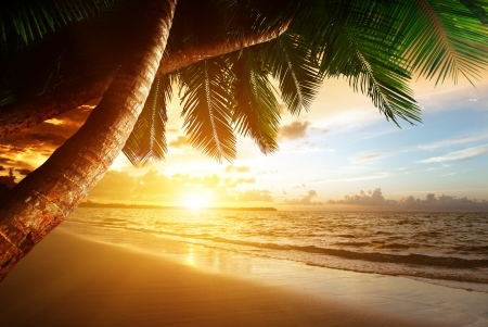 caribbean island: sunrise on Caribbean beach