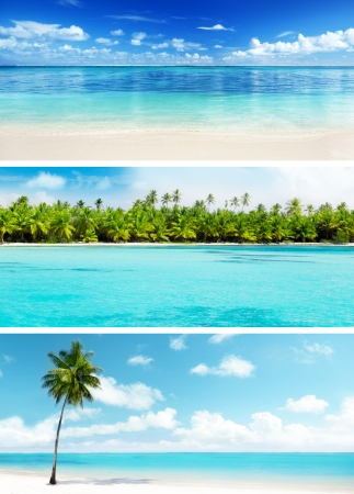 set of Caribbean beaches Stock Photo - 19243314