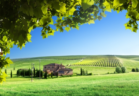 Tuscany landscape with typical farm house Foto de archivo