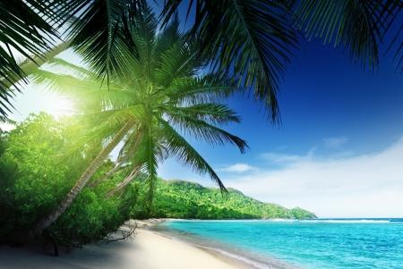 spiaggia a tempo di tramonto sull'isola di Mahe alle Seychelles