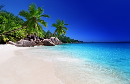lazio: beach at Praslin island, Seychelles Stock Photo