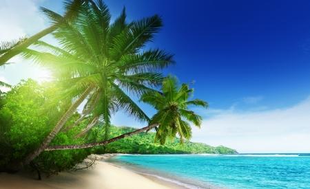 playas tropicales: playa de la puesta del sol en la isla de Mahe en las Seychelles Foto de archivo