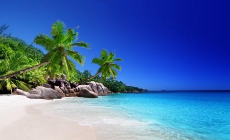 tropical island: beach at Praslin island, Seychelles Stock Photo