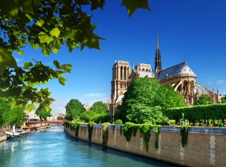 dame: Notre Dame Paris, France