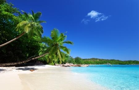 Anse Lazio beach at Praslin island, Seychelles  版權商用圖片