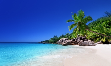 beach at Praslin island, Seychelles Stock Photo