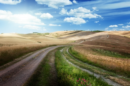 gravel roads: Road between the Fields of Tuscany, Italy Stock Photo