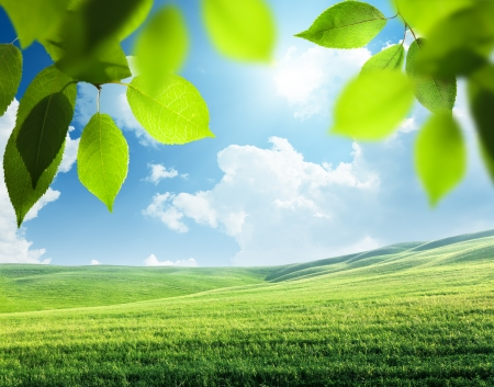 spring sunny background photo