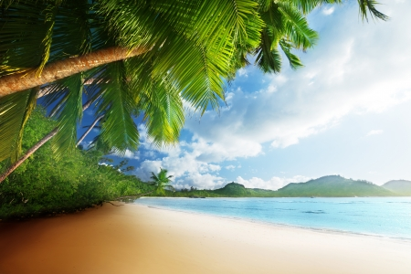 sunset on beach Anse Takamaka of Mahe island, seychelles  Stock Photo - 22109653
