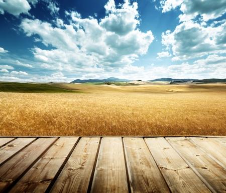 wood platform and barley  hills Tuscany, Italy Imagens