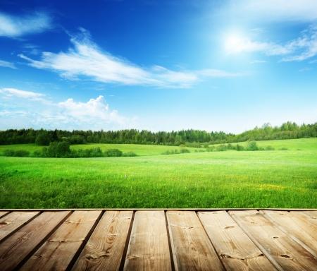 gebied van gras en perfecte hemel Stockfoto