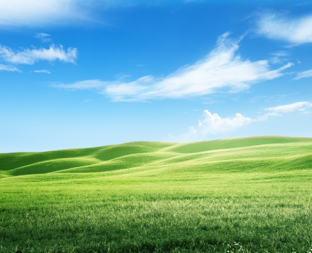 field of grass and perfect sky Stock Photo - 22701586