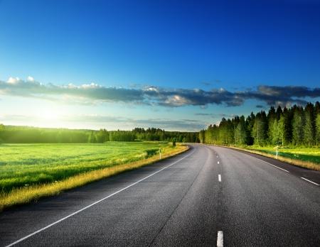 путешествие: Асфальтовая дорога в лесу