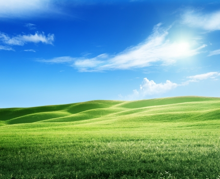 field of grass and perfect sky Stock Photo - 22936258