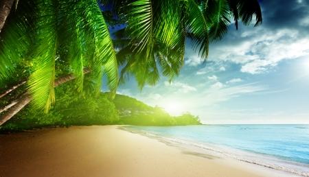 beach sunrise: sunset on beach Anse Takamaka of Mahe island, seychelles