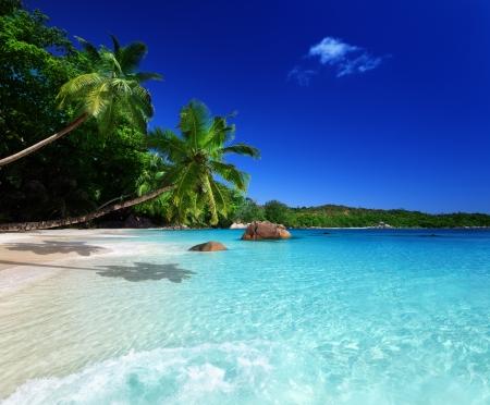 seychelles: beach at Praslin island, Seychelles  Stock Photo