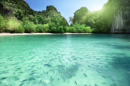 Tropical lagoon beach in Thailand Stock Photo - 23486991