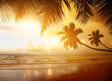 sunset on the beach of caribbean sea photo