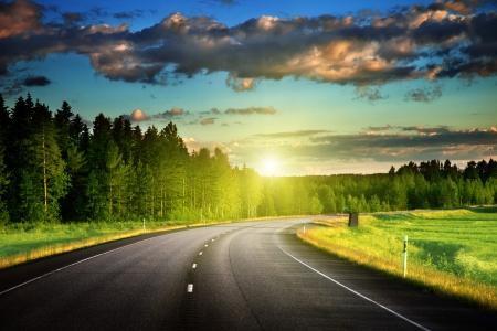 Asphalt road in forest Imagens