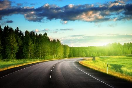 El asfalto de carreteras en los bosques Foto de archivo - 24168325
