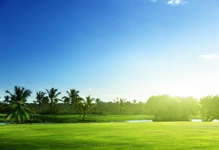 landscape: golf course