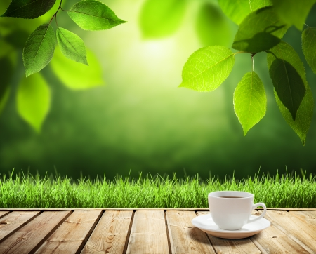 breakfast garden: cup coffee and sunny trees background