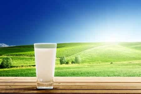 vacas lecheras: vaso de leche y un día soleado Foto de archivo
