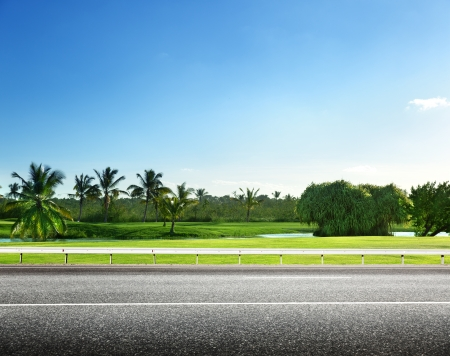 side view: asphalt road and tropical forest