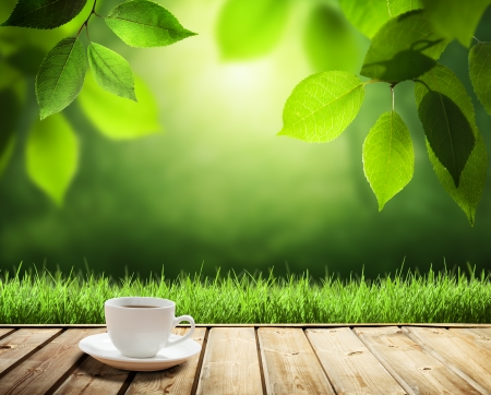 cafe table: cup coffee and sunny trees  Stock Photo