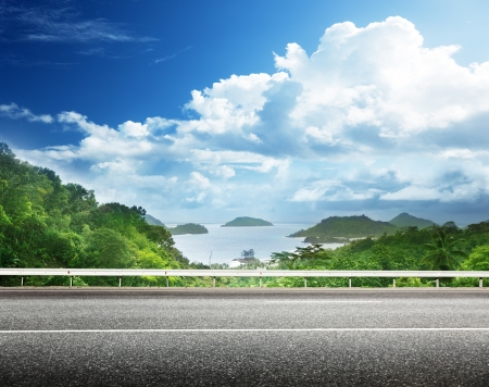 sea grass: asphalt road and tropical forest