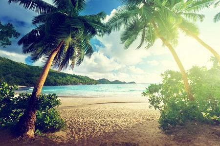 playas tropicales: puesta de sol en la playa Takamaka, isla de Mahe, Seychelles