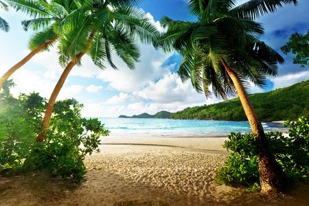 해변 타카, 마헤 섬, 세이셸에 일몰
