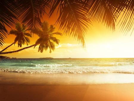 カリブの海のビーチでの夕日 写真素材