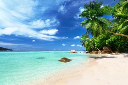 seychelles: beach on Mahe island, Seychelles