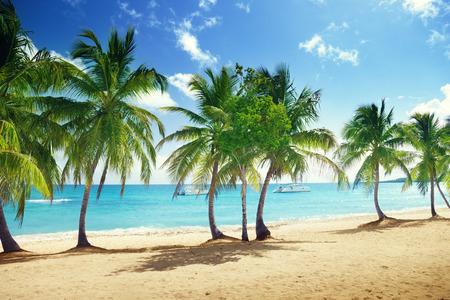 Catalina eiland in Dominicaanse republiek Stockfoto