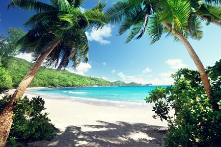 seychelles: beach Takamaka, Mahe island, Seychelles Stock Photo