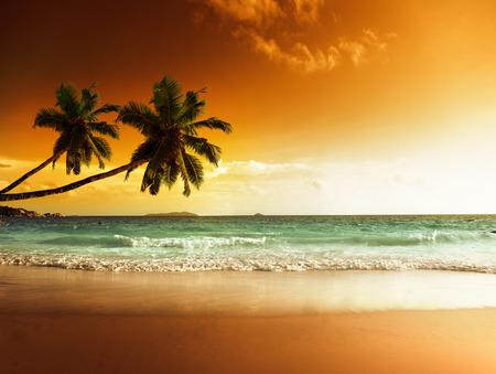 カリブ海のビーチの夕日
