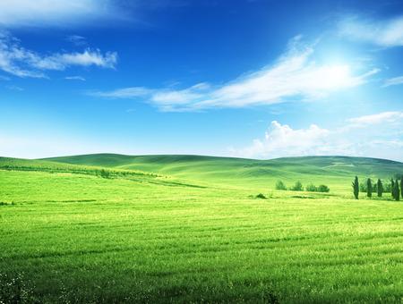 화창한 날 투스카니, 이탈리아의 언덕