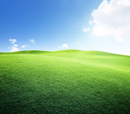 vista: green field and blue sky