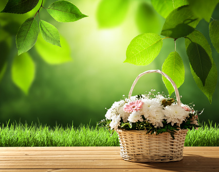 flowers on table and spring forest photo