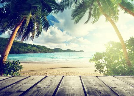 tabla de surf: seychelles playa y muelle de madera