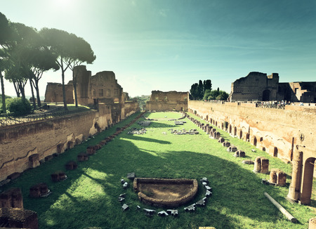 roma: Ruins of Stadium Domitanus at the Palatine Hill in Rome, Italy