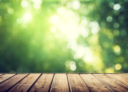 perspectives: wooden surface and sunny forest