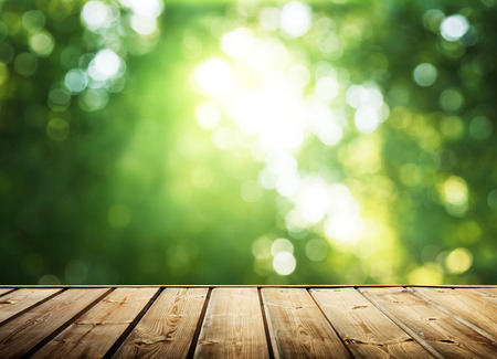 wooden surface and sunny forest photo