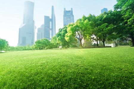 park in  lujiazui financial center, Shanghai, China photo