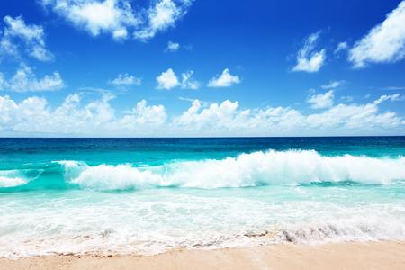 surfing waves: seychelles beach Stock Photo