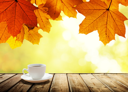 wooden deck: cup coffee and autumn forest