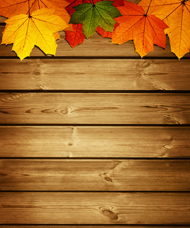 wooden background with autumn maple leaves Imagens
