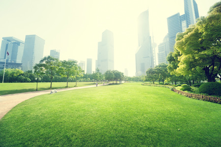 grass: park in  lujiazui financial centre, Shanghai, China Stock Photo