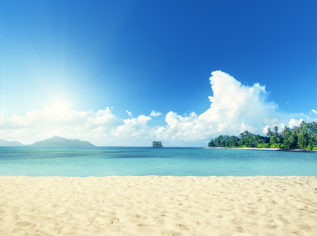 sunny beach: tropical beach Stock Photo